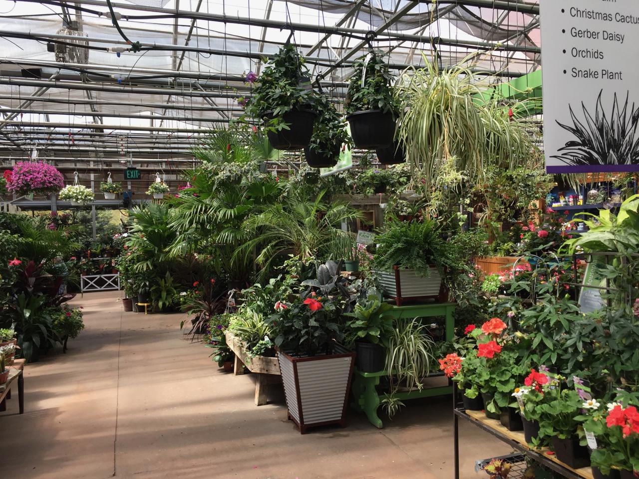 Garden Supply Williston Vt Garden Ftempo