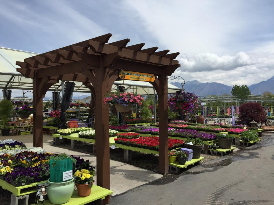 Discover More About Glover Nursery At Www Glovernursery