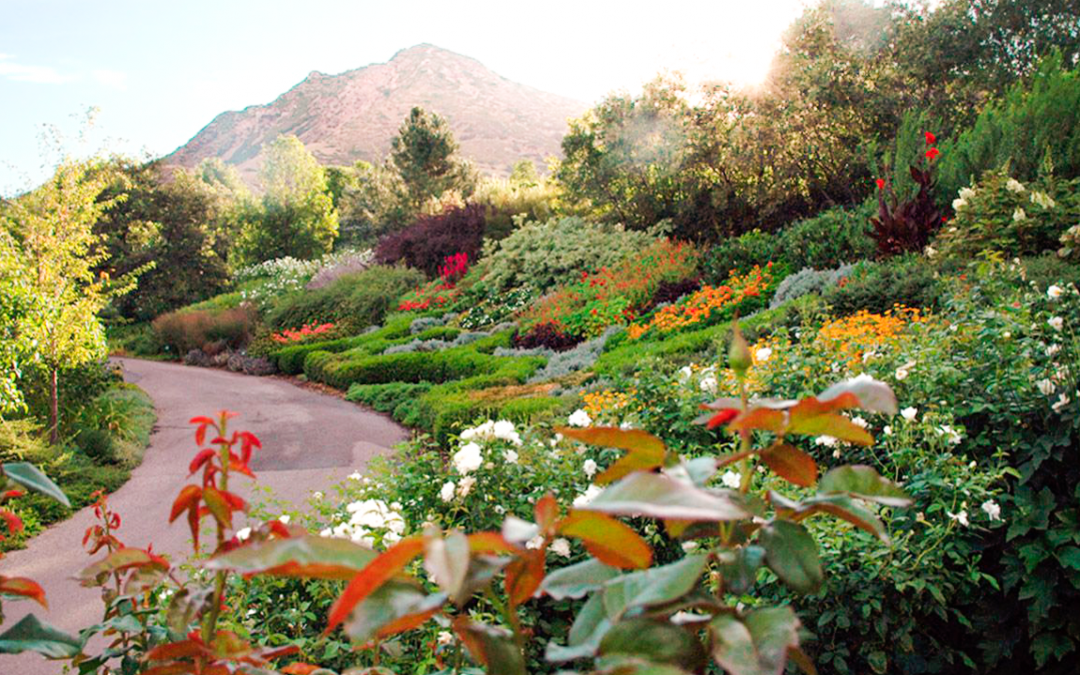 The Fall Event 2018 - Tour Stop 5 - Red Butte Garden